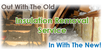 Dallas insulation removal contractor
