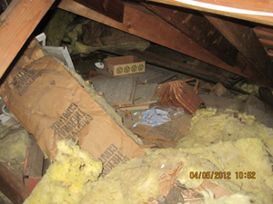 Trashed Attic Two